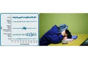 ارتباط اسپیندل خواب با عملکرد شناختی
