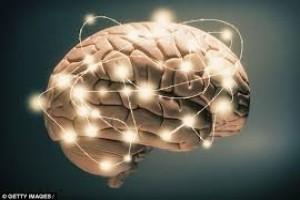 مکانیسم جدید کنترل جریان اطلاعات در مغز