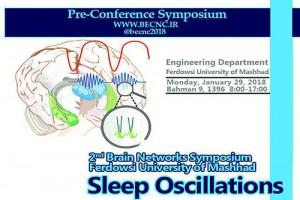 آزمایشگاه ملی نقشهبرداری مغز حامی دومين سمپوزيم شبكههاي مغزي؛ نوسانات مغزي حين خواب