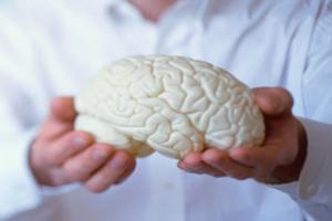 برگزاری سیزده سمینار تخصصی در هفتهی آگاهی از مغز در کشور