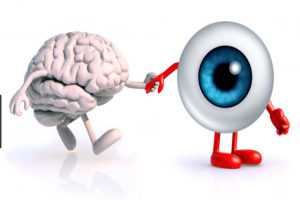 """دانشگاه فردوسی مشهد و مرکز علوم اعصاب شانگهای چین با حمایت ستاد توسعهی علوم و فنآوریهای شناختی، سمپوزیوم """"ادراک و توجه بینایی"""" را در مشهد برگزار میکنند"""