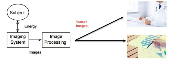 Introduction to brain image processing