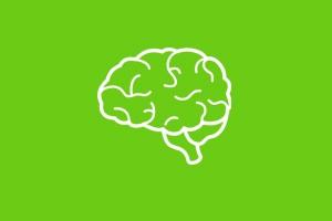 تحریک مغناطیسی فراجمجمه ای مغز (TMS)