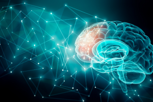 Over one hundred and forty research proposals with the support of the Cognitive Sciences and Technology Council are being conducted in the country