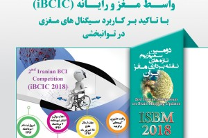 2nd Iranian Brain Computer Interface Competition (iBCIC)