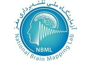 The Archives of Publications from the National Brain Mapping Laboratory Were Created.