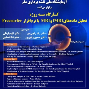 3-Day Workshop on MRI and fMRI data analysis in Freesurfer