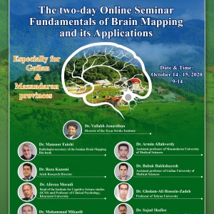 Two-day Online Seminar Fundamentals of Brain Mapping and its applications
