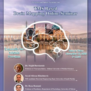 TMS based brain mapping online seminar