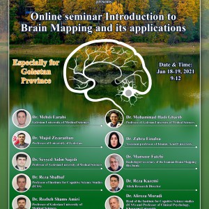 Online seminar Introduction to Brain Mapping and its applications