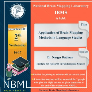 Application of brain mapping methods in language studies