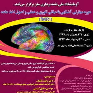 Familiarity whit theoretical and practical foundation of MRI and FMRI and the principles of obtaining  FMRI data  workshop