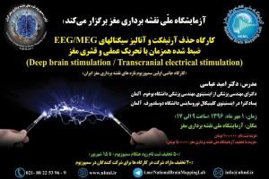 کارگاه حذف آرتیفکت و آنالیز سیگنالهای EEG/MEG ضبط شده همزمان با تحریک عمقی و قشری مغز